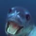 【捕食】ヒョウアザラシがペンギンを無残に引きちぎる狩り動画!大きさや生態は?
